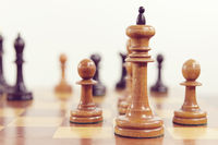 White king and two pawns on the chess board