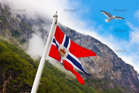 Norway flag and seagull bird