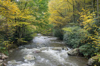 picturesque scenery from virginia creeper trail in autumn