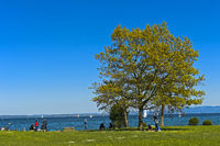 Park at the shores of Lake Constance, Romanshorn, Switzerland