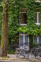 Bicycles in front of a house in Amsterdam