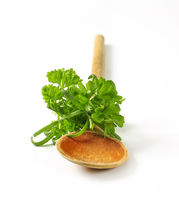 Fresh culinary herbs and wooden spoon