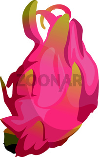 Cartoon pink dragonfruit vector illustration on white background.