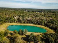 Small Body of Water from Aerial Drone View in Dense Forest Greenery Landscape