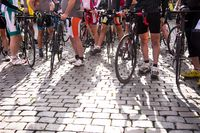 Group of professional cyclists