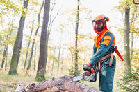 Holzfäller in Schutzausrüstung mit Kettensäge