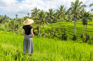 Relaxed fashionable caucasian female tourist wearing small backpack and traditional asian paddy hat looking at beautiful green rice fields and terraces on Bali island