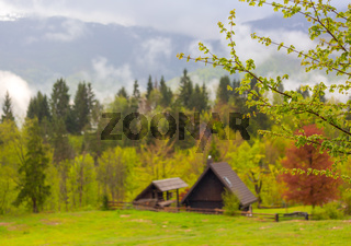 mountain and house in alps at spring