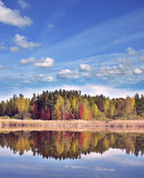 autumn landscape with colorful trees