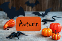 Orange Label, Text Autumn, Scary Halloween Decoration