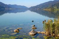 The Lake Alpsee 002. Germany