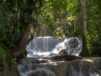 Dunns River Falls in rainforest Jamaica
