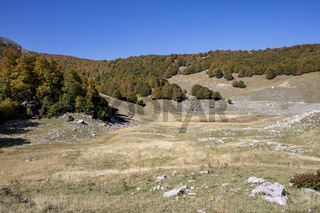 sunny valley in Abruzzo national park in autumn