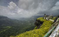 MAHARASHTRA, INDIA, September, 2013, Tourist at Malshej Ghat on a cloudy day with yellow flowers