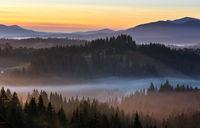 Early morning misty autumn Carpathian mountain, Ukraine.