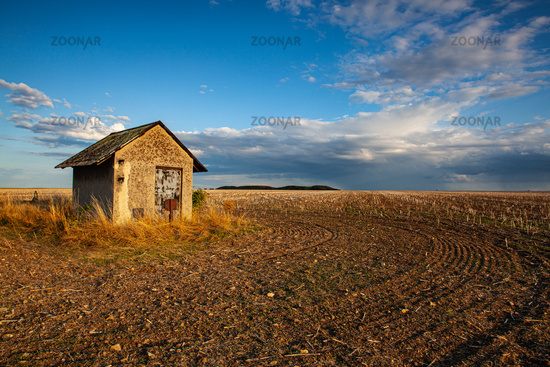 Old barn and empty field after harvesting in sunny day.