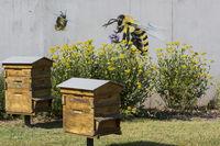 wandbemalung bienen vor blühstreifen und bienenhaus