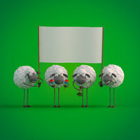 3d illustration four cute cartoon sheeps with empty banner on green background