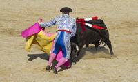 torero, bullfight, traditional Spanish party where a matador fighting a bull