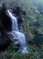 Beautiful bushland waterfall in Blue Mountains