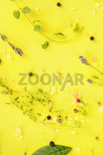 Culinary herbs and spices, shot from above on a yellow background, cooking pattern