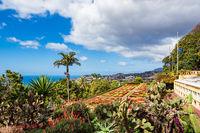 Blick auf einen Garten in Funchal auf der Insel Madeira, Portugal
