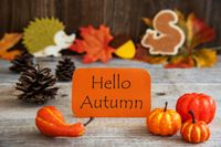 Label With Autumn Decoration, Text Hello Autumn