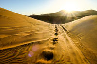 landscape in sahara desert, photo as background