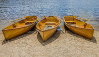 Rowboats on the Titisee, Black Forest