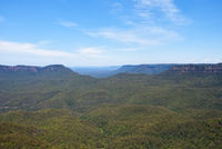 the Blue Mountains National Park, Australia