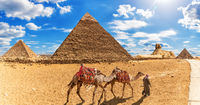 Bedouin with camels in front of the Pyramids and the Sphinx, Giza
