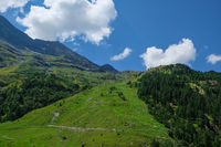 Mountain landscape in Swiss Alps in summer