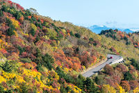 Fukushima Mountain bandai Autumn Fall