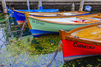 Colorful fishing boats in the habor of Torbole on lake Garda, Trient, Italy