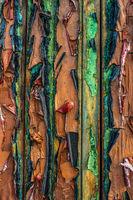 Abstract Peeling Paint Texture