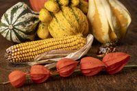 Stillleben der Herbstfrüchte