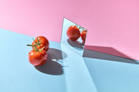 Two tomatoes with green stems are reflected in a mirror on a blue-pink double background with copy space. Healthy vegetable