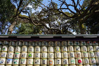 TOKYO, JAPAN - 12 FEB 2018: Sake rice barrels piled up with green and red inscriptions in Yoyogi Park