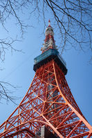 TOKYO, JAPAN - 15 FEB 2018: Tokyo tower Eiffel replica framed by brunches and low angle at daytime