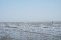 Incidental people walking across mudflat tideland at ebb tide in Cuxhaven Germany