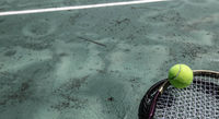 Tennis ball and racket in the court