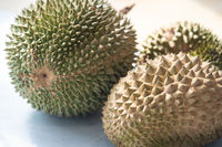 Malaysia famous fruits Blackthorn durian