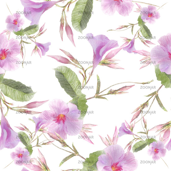 Pink Dipladenia flowers on white background.Seamless pattern.