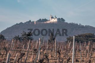 View towards Leopoldsberg over the vineyards in Nussdorf during winter