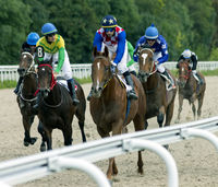 Horse race for the prize of the North Caucasus