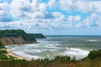 sea and grassy high coast