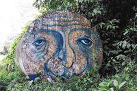 Art in the rainforest a graffiti
