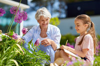 grandmother and girl study flowers at garden