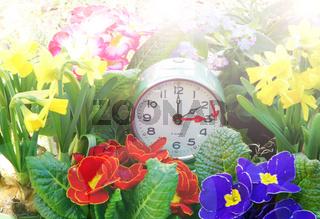 Zeitumstellung, Sommerzeit, Uhr, 31. März 2019, Frühlingsblumen,  Uhr vorstellen, Textraum,