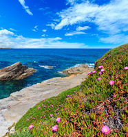 Atlantic blossoming coastline, Spain